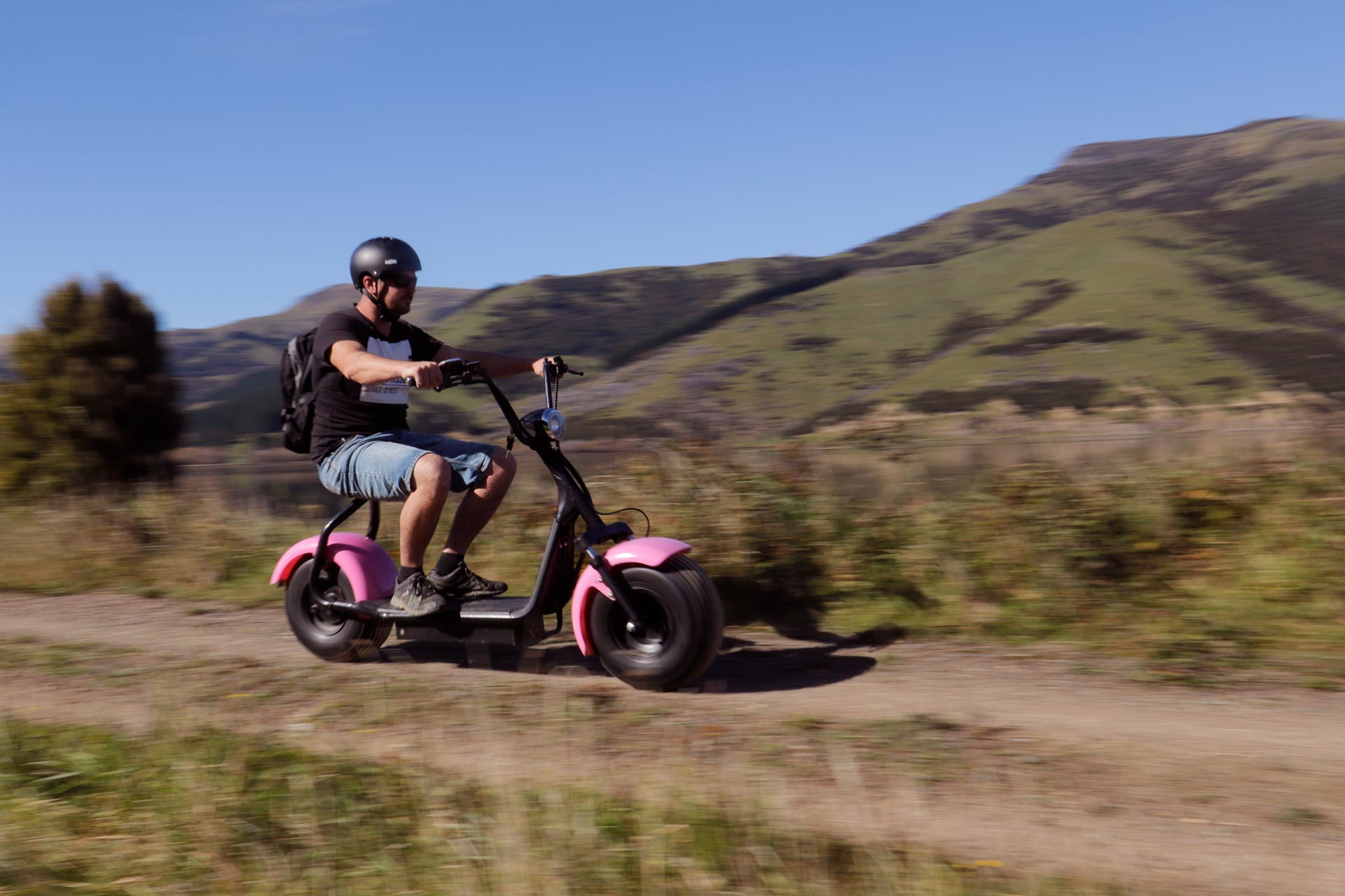 Little Rail Trail Christchurch Day Trips
